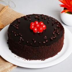 Plain Chocolate Cake [500g]